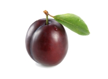 Your baby is the size of a plum at 12 weeks pregnant - Pregnancy Week By Week