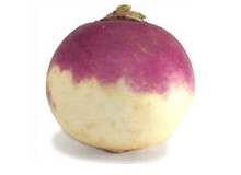 Your baby is the size of a turnip at 17 weeks pregnant - Pregnancy Week By Week